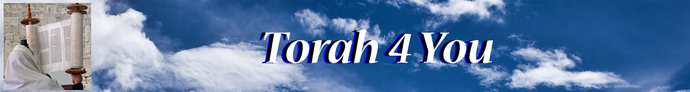 Torah for you